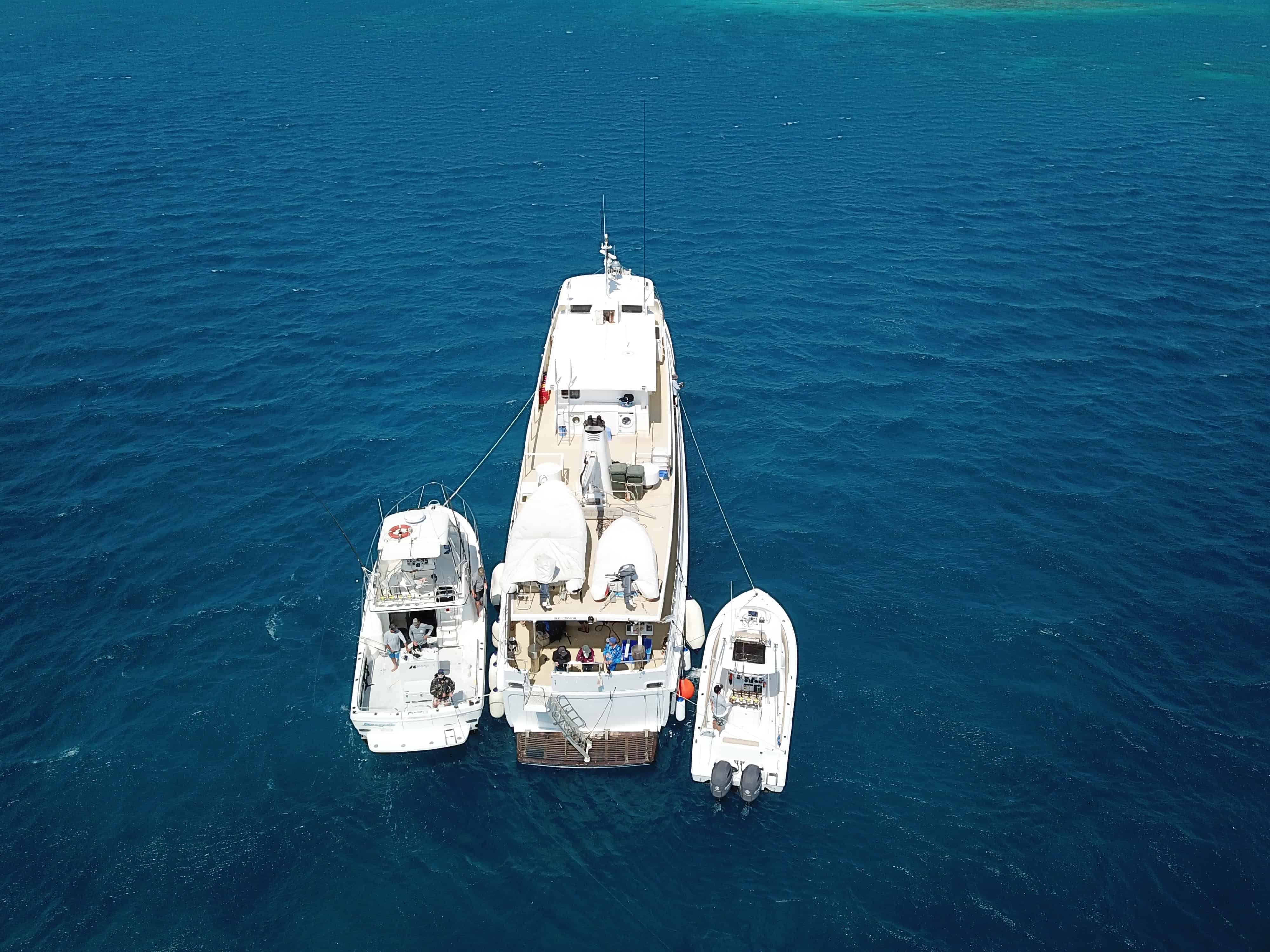 Outside Edge Adventures Fishing Charters Coral Sea